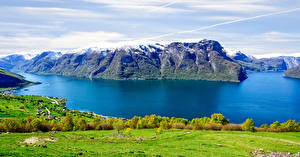 Фотография Норвегия Горы Луга Реки Кусты Aurlands Fjord