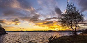 Фотография Норвегия Рассветы и закаты Небо Озеро Деревья Stavanger Rogaland Природа