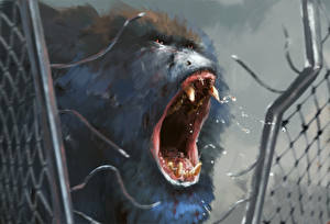 Фотография Рисованные Обезьяны Клыки Морда Злость Крик Ограда Freedom Животные