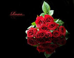 Фото Розы Черный фон Бордовый Отражение Цветы