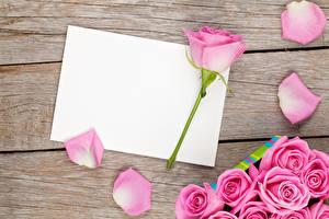 Фотография Розы Доски Шаблон поздравительной открытки Розовый Лепестки Цветы