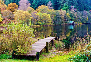 Картинки Шотландия Озеро Леса Пирсы Осень Aberfoyle Природа