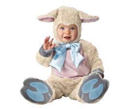 Картинки Овцы Белый фон Мальчики Униформа Улыбка Бантик Ребёнок