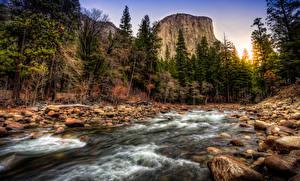 Картинки Штаты Леса Реки Камень Пейзаж Йосемити Калифорния Утес Ручей Природа