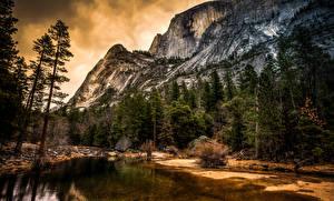 Фотография США Парки Озеро Пейзаж Йосемити Ели Скала