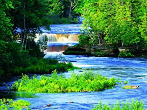 Картинка США Речка Водопады Деревья Трава Tahquamenon River