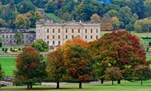 Фотография Великобритания Англия Дома Парки Осень Деревья Chatsworth House Derbyshire Города