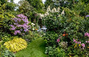 Фото Великобритания Сады Кусты Swansea Botanic Gardens Wales