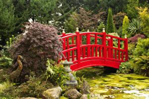 Фотографии Великобритания Парки Пруд Мосты Камень Кустов Mount Pleasant gardens Природа
