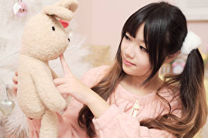 Картинки Азиаты Игрушки Кролики Шатенка Девушки