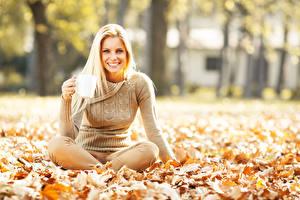 Картинки Осенние Блондинка Улыбка Листья Свитер Сидит Девушки