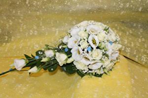 Фото Букеты Розы Лизантус Белый Цветы
