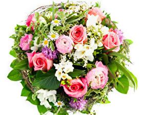 Фотографии Букеты Розы Лютик Белый фон Цветы