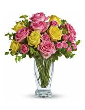 Фото Букеты Розы Белый фон Ваза Цветы