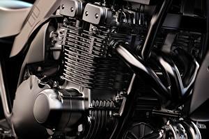 Фотографии Крупным планом Мотор Мотоциклы