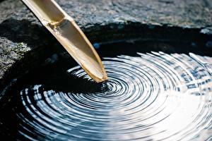 Фотографии Вблизи Вода Бамбук Окружность Природа