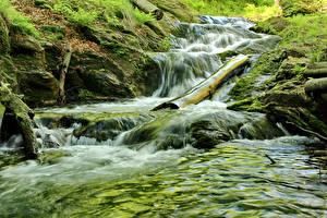 Обои Чехия Водопады Мох Jeseniky Mountains Природа