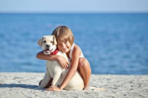 Обои Собаки Мальчики Пляж Ретривер Улыбка Руки Милые Ребёнок Животные