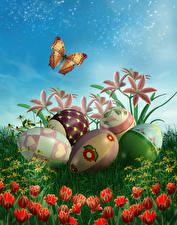 Картинка Пасха Праздники Лилии Тюльпаны Бабочки Яйца Дизайн Цветы