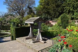 Фото Англия Парки Лондон Колодец Кусты Streatham Common Природа