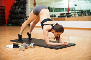 Обои Фитнес Шатенка Физические упражнения Спина Девушки Спорт
