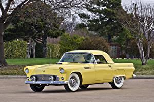 Фотографии Ford Ретро Желтых Металлик 1955 Thunderbird (P5-40) Автомобили