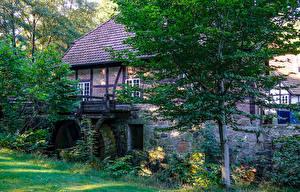 Фотография Германия Здания Деревья Водяная мельница Auf Dem Sande Lower Saxony Города