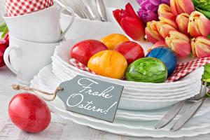 Обои Праздники Пасха Тюльпаны Яйца Немецкий