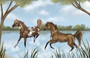 Картинки Лошади Рисованные Двое Животные