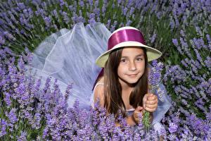 Фотография Лаванда Девочки Шляпа Смотрит Миленькие Ребёнок