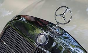 Картинка Логотип эмблема Крупным планом Mercedes-Benz hood Машины