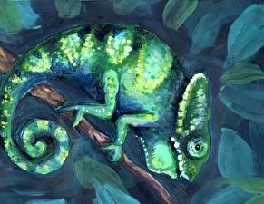 Фотографии Рисованные Ящерица Хамелеон Животные
