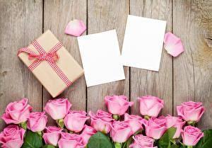 Фотографии Розы Доски Шаблон поздравительной открытки Розовый Подарки Лепестки Цветы