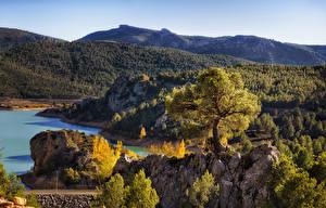 Фотографии Испания Побережье Горы Леса Пейзаж Деревья Nerpio Albacete Природа