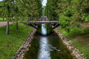 Фотографии Санкт-Петербург Парки Мосты Пруд Catherine Park Pushkin Природа