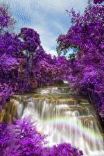 Обои Таиланд Парки Водопады Цветущие деревья Huay Mae Khamin Waterfall Природа