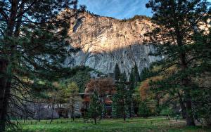 Фото Америка Парк Дома HDRI Йосемити Утес Деревья Ели Природа