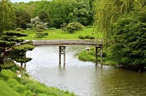 Обои США Парки Реки Мосты Чикаго город Деревья Botanic Garden Природа картинки