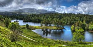 Картинки Великобритания Парки Озеро Леса Пейзаж Холмы Деревья HDR Lake District National Park Природа
