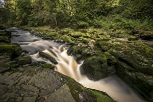 Фотография Великобритания Водопады Камень Мох Yorkshire