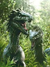Фотография Древние животные Динозавры Двое Velociraptors Животные