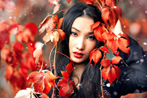Фотография Азиаты Брюнетка Листья Взгляд Красивые Alessandro Di Cicco, Huan Девушки