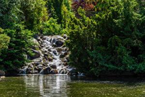 Фотография Берлин Германия Парки Пруд Водопады Камень Деревья Viktoriapark Природа