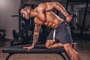 Фотографии Бодибилдинг Мужчины Тренировка Гантели Руки Татуировки Мускулы Спорт