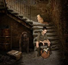 Фотографии Оригинальные Собака Коты Сумка Лестница Смешные Девушки