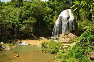 Обои Куба Водопады Деревья Pinar del Rio