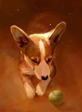 Картинки Собаки Рисованные Вельш-корги Мячик животное