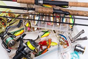 Картинка Рыбалка Удочка Рыбы Крупным планом