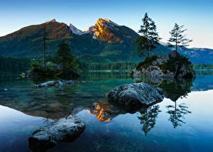 Фотографии Германия Озеро Горы Пейзаж Бавария Мох Деревья Berchtesgaden