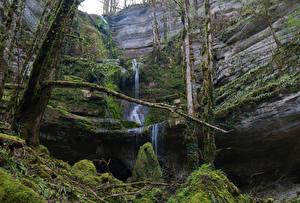 Фотографии Люксембург Водопады Скала Мох Ветвь Mullerthal Trail Природа